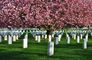 funeral homes in Madison, OH