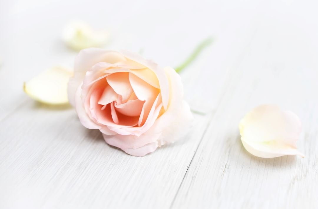 cremation services in Geneva, OH